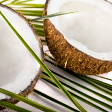 Coconut oil may combat tooth decay