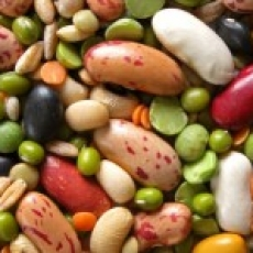 Whole Grains, Legumes, Nuts and Seeds – The Importance of Preparation