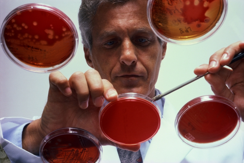 Blood Clots may be triggered by Dental Plaque Bacteria